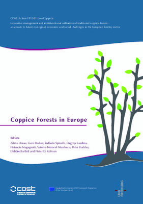 coppice-volume-front